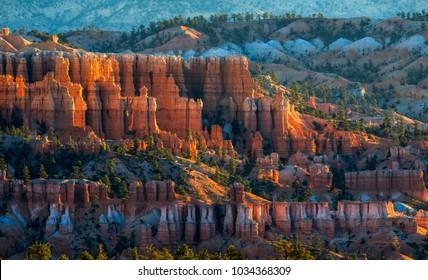 Golden Sunrise at Bryce Canyon