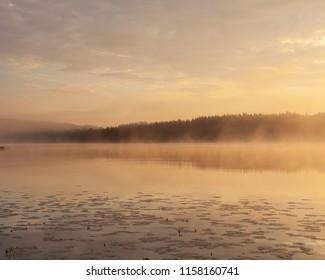 Golden sunrise at foggy serene lake
