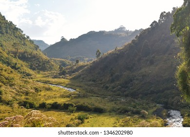 Golden sunrise in the mountains, Chania River in Aberdare Ranges, Kenya