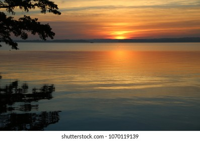 Golden sunrise - Reelfoot Lake State Park, Tennessee