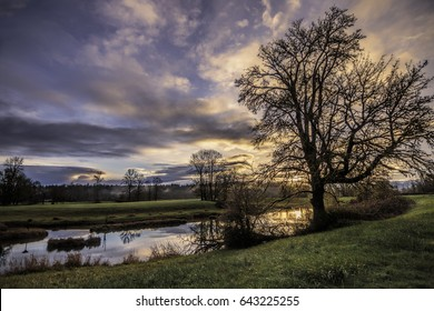 Golden sunrise reflected in pond with backlit tree and green fields.