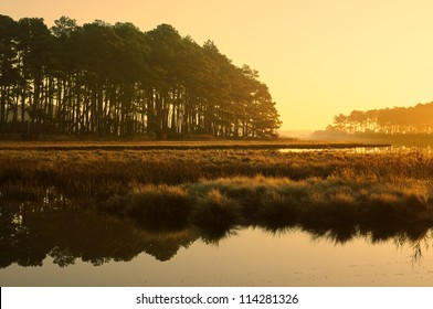 Golden Sunrise at Salt Marsh - Chincoteague National Wildlife Refuge, Virginia