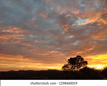 Golden Sunrise welcomes the new day.  Mountains and a tree appear black in contrast to the golds, orange, and grey of the skie and clouds.
