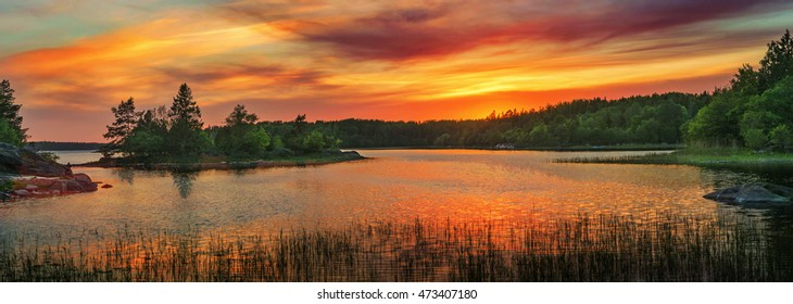 Golden sunset in the archipelago of Scandinavia. Evergreen forest during late summer in Sweden and in panorama