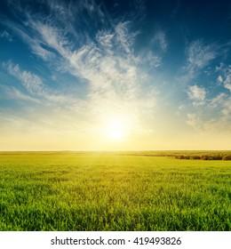 golden sunset in cloudy sky over green grass field