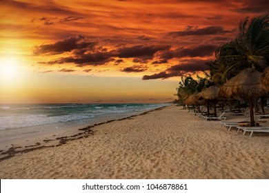 Golden sunset over the beach of the Riviera Maya in Tulum, Quintana Roo, Mexico