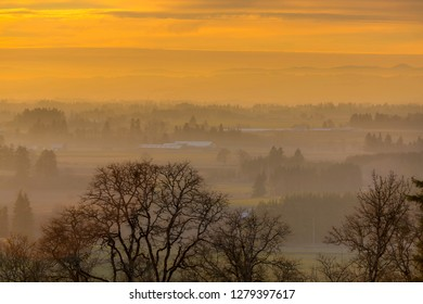 Golden sunset over farmland in rural Oregon during winter