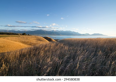 Golden sunset over Kaikoura Peninsula Walkway, Canterbury, New Zealand