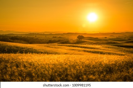 Golden sunset over tuscan fields in Italy