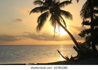 Golden Sunset in Tahiti paradise