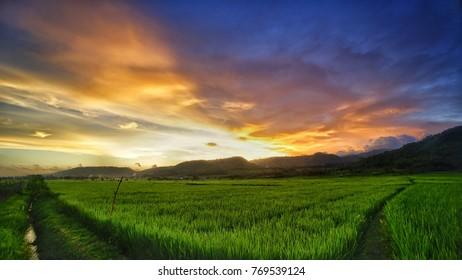 Golden sunset from village