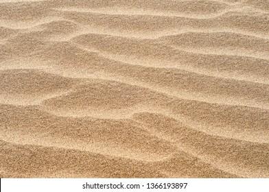 Golden texture of sand