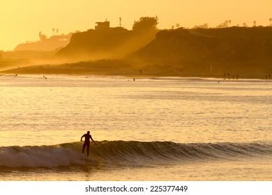 Golden Wave Surfer