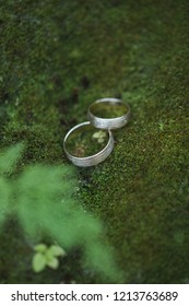 Golden wedding rings on green moss in forest