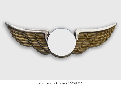 Golden wings pin, on white background, clipping path added.