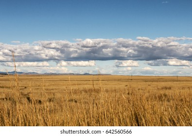 Golden Winter grassland landscape against blue sky and clouds in Orange Free State in South Africa