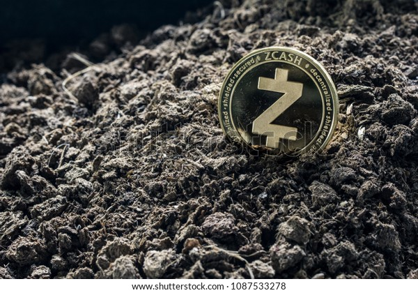 Golden Zcash coin in concept coming from the soil. Zcash is a one currency. of cryptocurrency.