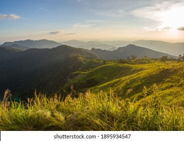 Goldenhour at the green valley of Chiangrai, Thailand.