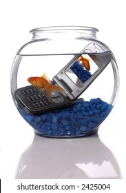 A goldfish in a bowl swims by a cell phone submerged in the water. A picture of the same goldfish is displayed on the screen of the cell phone. Orientation is vertical.