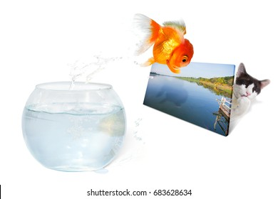 Goldfish jumping from glass bowl to the river picture. The Concept of Misleading illusion and doing something wrong beyond correcting.