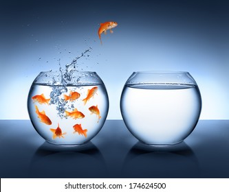 goldfish jumping out of the water - improvement and career concept