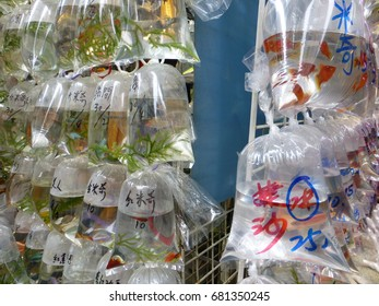 Goldfish sold in Hong Kong. The kind of goldfish is written in the bag.