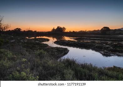 The Goleta Slough wetlands sunset. Santa Barbara, California