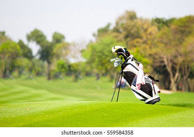 Golf bag is located on fairway in the golf course.