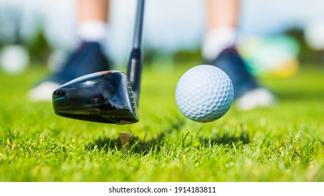 golf ball ang club on golf green grass natural  fairway