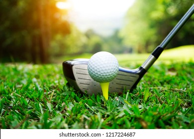 Golf ball and golf club in beautiful golf course with sunset background.