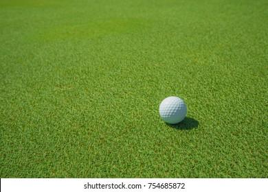 Golf ball in golf course.