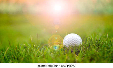Golf ball in golf course on sunset. It on grass fairway of field. Golfer difficult playing on long grass in this shot