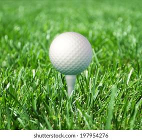 golf ball in fresh green grass