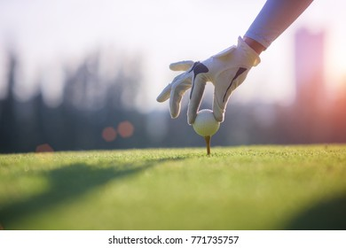 Golf ball gentle put lie on the wooden tees by hand of woman golf player, before hit from tees off to the fairway