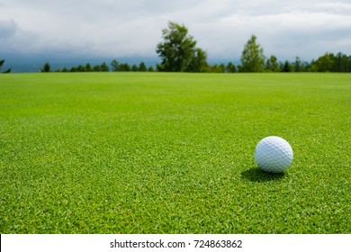 Golf ball on the beautiful green of the turf. Golf is a sport to play on the turf