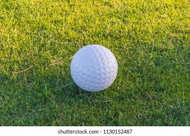 Golf ball on the grass of a course near Santa Cruz on the island of Tenerife
