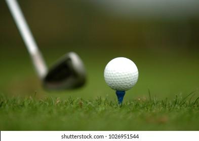golf ball on a green