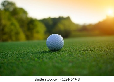 Golf ball on green in beautiful golf course at sunset background.