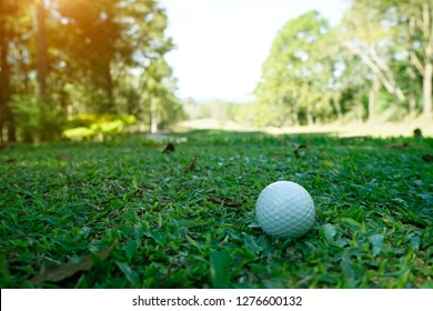 Golf ball on green in beautiful golf course at night background. Golf equipment on green grass in golf course at Thailand