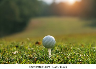 golf ball on green in a golf course with sunshine in thailand