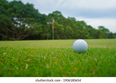Golf ball on green in the evening golf course with sunshine in thailand.