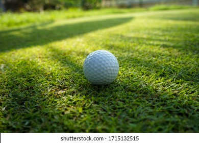 Golf ball on green grass sunset background. Colorful of white Golf ball on Green field golf course in morning time with soft sunlight.