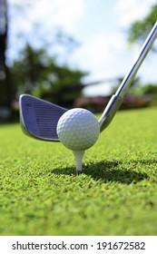 Golf ball on the green grass.