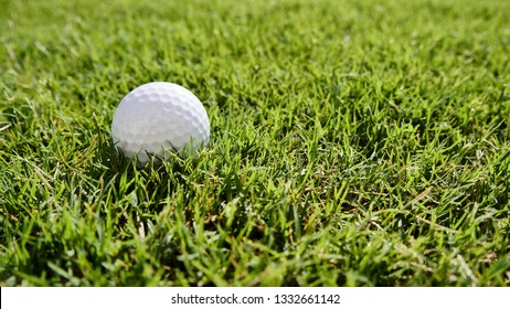 Golf ball on the green lawn in the sunny morning.