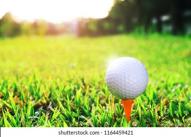 The golf ball is on the orange tee in the golf course, with the morning sun shining in the background.