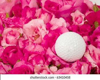 golf ball on rose background.Rose is a flower symbol represents love, romance in Valentines Day