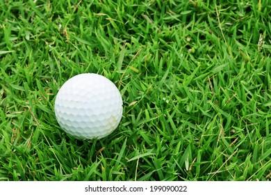 Golf ball on Rough grass