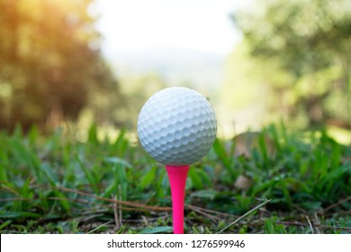 Golf ball on tee in beautiful golf course at night background. Golf equipment on green grass in golf course at Thailand