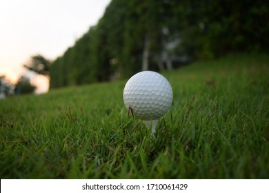golf ball on tee in beautiful Golf ball close up in golf coures at Thailand