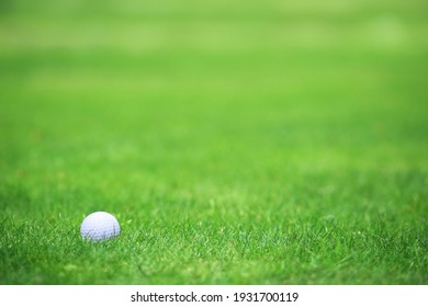 Golf ball on tee on green grass of golf course background, backgrounds for banner foth copy space for text
